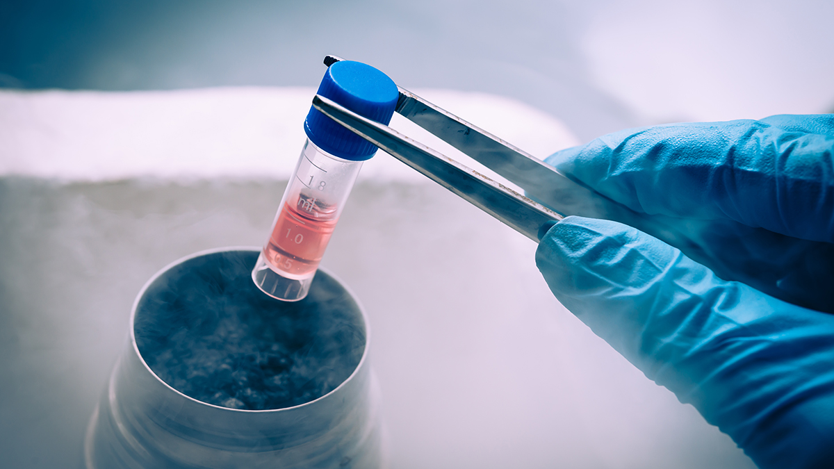 Stem Cell Treatment in Ukraine